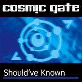 Should'Ve Known von Cosmic Gate
