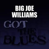 Got the Blues de Big Joe Williams