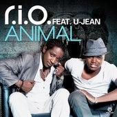 Animal von R.I.O.