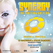 Synergy Vol. 2 (The Festival Edition) - Mixed By DJ Madwave & Steve Sanders / Dan Martin (Various artists) von Various Artists