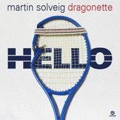 Hello von Martin Solveig
