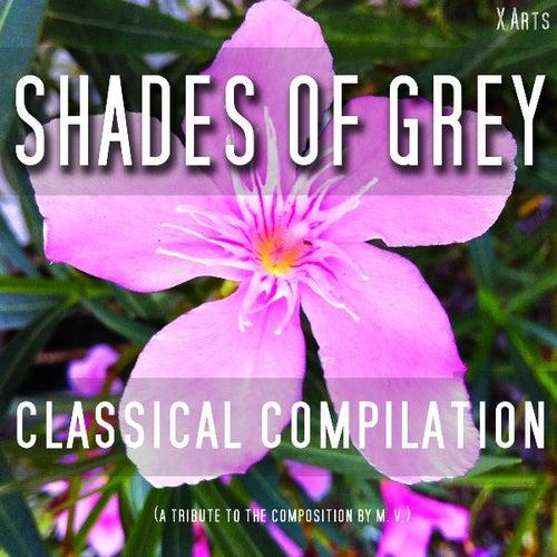 Shades of Grey - Klassik Vol. 1 by Various Artists