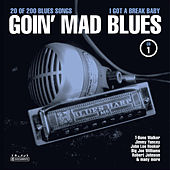 Goin' Mad Blues Vol. 1 by Various Artists