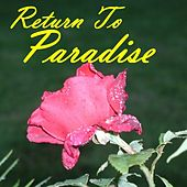 Return To Paradise  -  Jazz Big Band by Various Artists