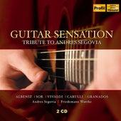 Guitar Sensation de Various Artists