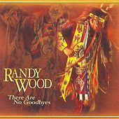There Are No Goodbyes by Randy Wood