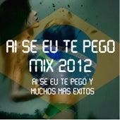 Ai Se Eu Te Pego Mix 2012 de Various Artists