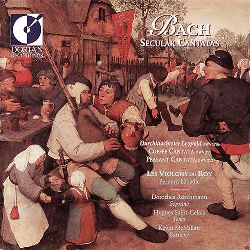 Bach, J.S.: Secular Cantatas by Dorothea Roschmann
