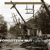 Forgotten but Not Gone de Various Artists