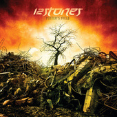 Potter's Field by 12 Stones