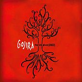 The Link Alive de Gojira