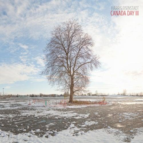 Canada Day III by Harris Eisenstadt