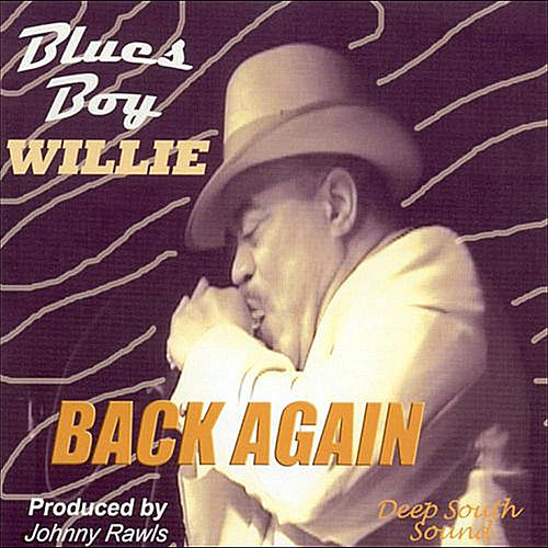 Back Again by Blues Boy Willie
