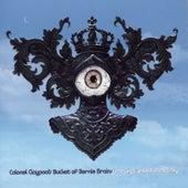 The Big Eyeball In The Sky de Les Claypool