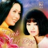 Tinh Chi Dep de Various Artists
