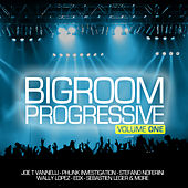 Progressive Bigroom, Vol. 1 von Various Artists
