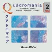 Romantic Songs by Mahler, Brahms, Strauss -Vol.2 de Bruno Walter