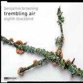 Trembling Air de Eighth Blackbird