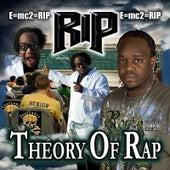 Theory of Rap von Rip