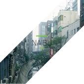 There de Naibu