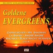 Goldene Evergreens by Various Artists
