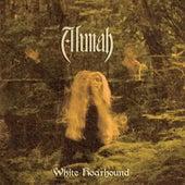 White Hoarhound by Alunah