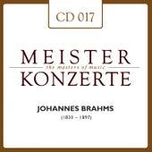 Johannes Brahms by Arthur Rubinstein