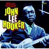 Motor City Blues Master de John Lee Hooker