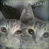 Orphans of the Storm van Randy Raatz