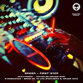 First step by Various Artists