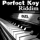 Perfect Key Riddim by Various Artists