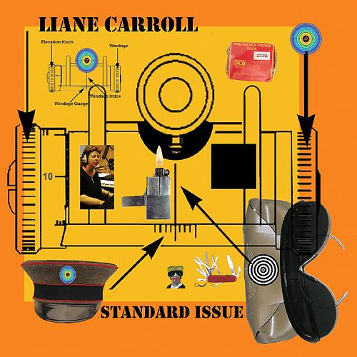 Standard Issue de Liane Carroll