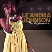 The Experience by Le'Andria Johnson
