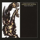 Shake The Disease by Depeche Mode