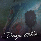 Deep Love 2 von Various Artists