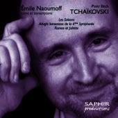 Tchaikovsky: Les saisons - Romeo et Juliette - Adagio lamentoso de la 6ème Symphonie von Emile Naoumoff