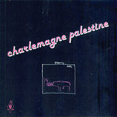Strumming Music by Charlemagne Palestine