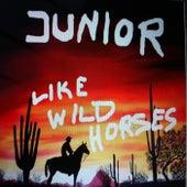 Like Wild Horses by Junior