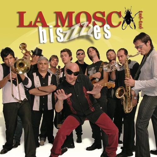 Biszzzzes by La Mosca Tse Tse