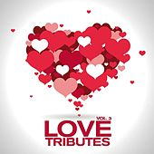 Love Tributes Vol. 3 von Various Artists