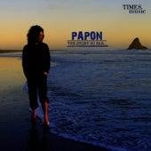 Papon the Story So Far de Papon