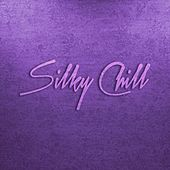 Silky Chill Chill House & Chill Out de Various Artists