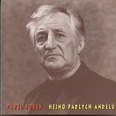 Hejno padlych andelu von Pavel Bobek