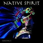 Native Spirit, Vol. 3 by Hollywood Symphony Orchestra