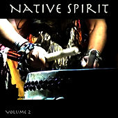 Native Spirit, Vol. 2 by Hollywood Symphony Orchestra