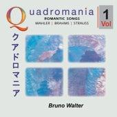 Romantic Songs by Mahler, Brahms, Strauss -Vol.1 de Various Artists
