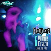 Young & Crazy by Notion