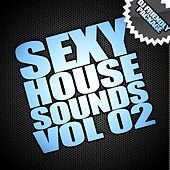 Sexy House Sounds Vol 2 (Compiled By Swing & Shuffle) de Various Artists