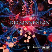 Reconnexion Compiled By Funk Truck by Various Artists