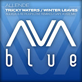 Tricky Waters / Winter Leaves (The Remixes) von Allende